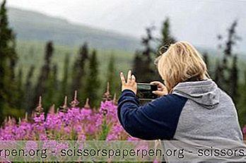 25 Best Alaska State & National Parks