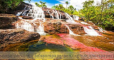Fantastiske Naturlige Underverk I Verden: Cano Cristales: River Of Five Colours