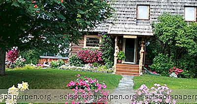 Meilleures Escapades Romantiques En Alaska: Big Bear Bed And Breakfast