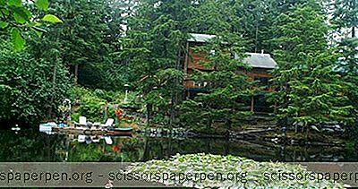 Aventure - Escapade Romantique À Juneau, En Alaska: Le Pearson'S Pond Luxury Inn & Adventure Spa