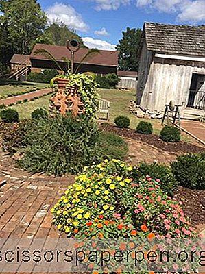 10 Die Besten Aktivitäten In Tuscumbia, Alabama