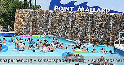 Decatur, Al Dinge Zu Tun: Point Mallard Waterpark