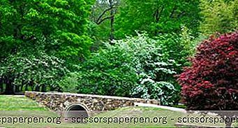 Huntsville Botanical Garden I Huntsville, Al