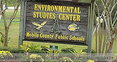 Choses À Faire À Mobile, Alabama: Environmental Studies Center
