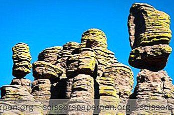 16 Những Điều Tốt Nhất Để Làm Ở Wilcox, Arizona