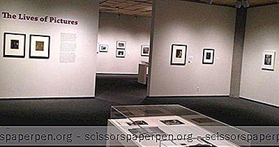 Dingen Om Te Doen In Tucson, Az: Centrum Voor Creatieve Fotografie