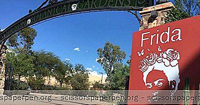Co Dělat V Tucsonu, Az: Tucsonské Botanické Zahrady
