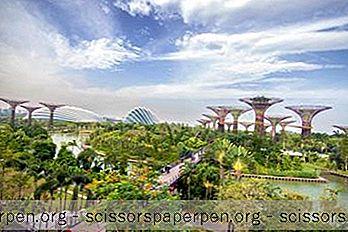 25 Die Besten Aktivitäten In Singapur