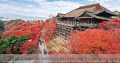 일본의 즐길 거리 : 기요 미즈 데라