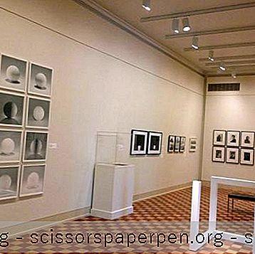Атракции - Неща За Правене В Шарлотсвил, Ва: Музей На Изкуствата На Фралин