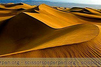 Атракции - Неща За Правене В Колорадо: Национален Парк И Резерват Големите Пясъчни Дюни