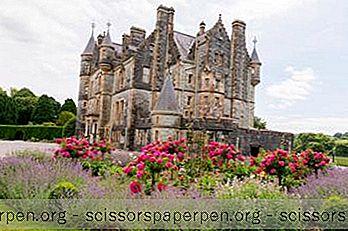 Tekemistä Irlannissa: Blarneyn Linna Ja Puutarha