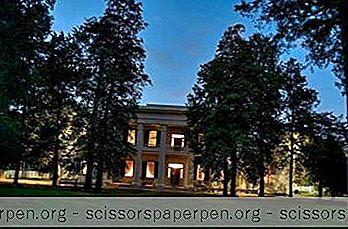 Atracciones - Cosas Que Hacer En Nashville, Tn: Hermitage De Andrew Jackson