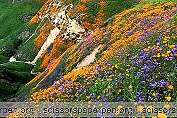 10 Najbolje Stvari U Chino Hillsu, Kalifornija