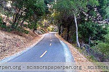 12 Bedste Ting At Gøre I San Mateo, Californien