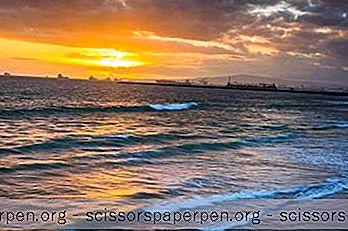 Cele Mai Bune Lucruri De Făcut În 12 Beach Seal, California