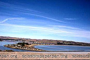 20 Parhaat Tekemistä Bodega Bayssä, Kalifornia