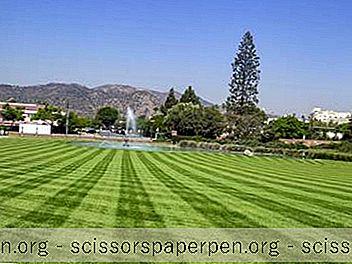 22 Die Besten Aktivitäten In Glendale, Kalifornien