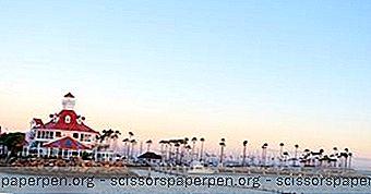 25 Paras Tekemistä Long Beachissä, Ca