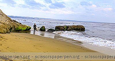 5 Najbolje Plaže Prilagođene Psima U Santa Cruzu