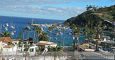 Rómantískt Brottför Catalina-Eyja: Aurora Hotel