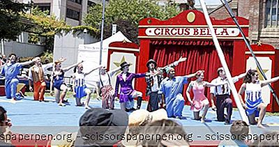 Circus Bella Dans La Bay Area
