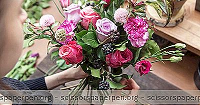 Flower Mama - Top Fleurs Et Arrangements Floraux En Californie