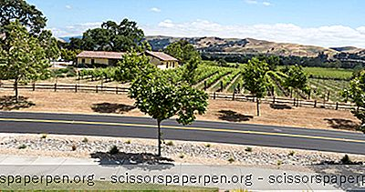 Livermore Wine Trolley Tips For Travellers