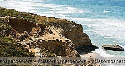 Места За Посету У Калифорнији: Државни Природни Резерват Торреи Пинес
