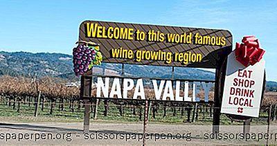 Što Treba Učiniti U Kaliforniji: Obilazi Platiša U Napi I Sonoma