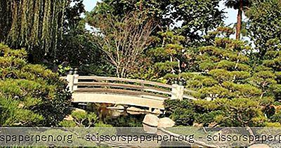 Choses À Faire À Long Beach, Ca: Earl Burns Miller Japanese Garden