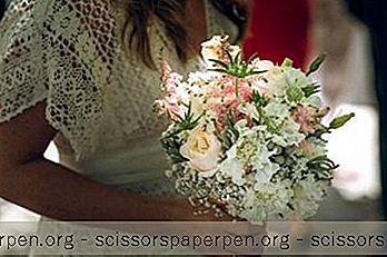 Дестинации - 25 Най-Добрите Места За Сватба В Торонто