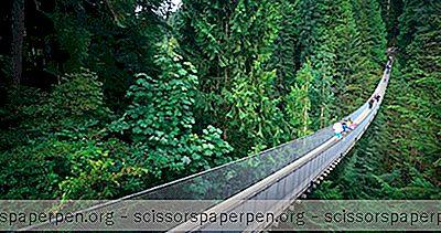 Matkakohteet - Tehtävät Kanadassa: Capilano Suspension Bridge Park