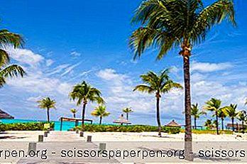 Destinacije - 21 Najbolje Stvari Koje Treba Učiniti U Turcima I Caicosu