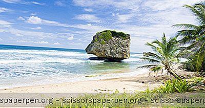 6 Meilleures Plages De La Barbade