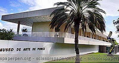 Những Việc Cần Làm Ở Puerto Rico: Bảo Tàng De Arte De Ponce