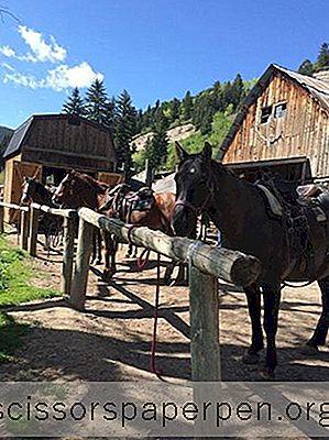 11 Die Besten Aktivitäten In Edwards, Colorado