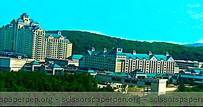 Connecticut Resorts: Great Cedar Hotel På Foxwoods Resort Casino