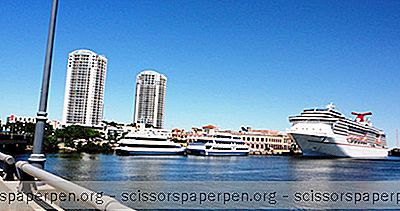 3 Best Cruises De Tampa