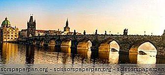 25 Най-Добрите Неща За Правене В Прага, Чехия