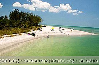 Најбоље Време За Посету Острву Санибел, Флорида, Време И Други Савети За Путовања