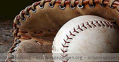Hal Yang Dapat Dilakukan Boca Raton: Sports Immortals Museum