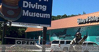 Islamorada, Fl Things To Do: History Of Diving Museum