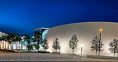 Nsu Meno Muziejus Fort Loderdeilyje, Floridoje
