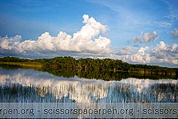 Käyntikohteet Floridassa: Evergladesin Kansallispuisto