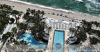 Romantiske Utflukter I Florida: Diplomat Resort & Spa Hollywood