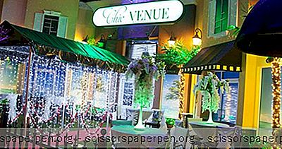 Tampa Wedding Venues: Lieu Chic