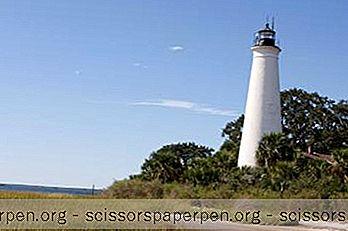 Những Việc Cần Làm Ở Florida: Khu Bảo Tồn Động Vật Hoang Dã Quốc Gia St. Marks