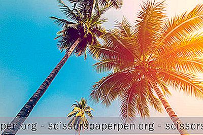 Неща, Които Трябва Да Направите Във Флорида: Чудесни Плажове Панама Сити Бийч