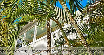 Choses À Faire À Key West: Petite Maison Blanche Harry S. Truman
